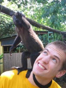 howler monkey on tourist